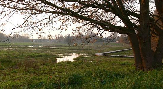 Akkermansbeekpark_Dick_te_Voortwis