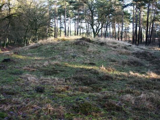 Grafheuvel Met Links De Wildwal Foto Rijk Ploeg