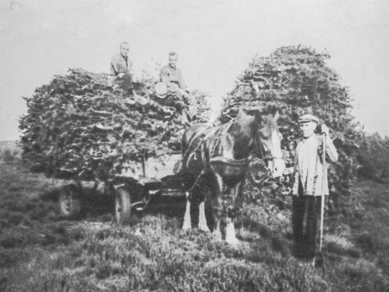 Historische Foto Plaggenstekers
