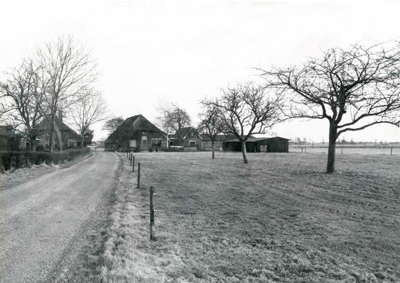 Holhorsterweg