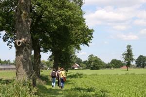 wandelaars homepage
