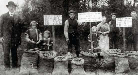 wedstrijd-aardappelproductie-met-kunstmest_Historische-Vereniging-Oud-Lunteren